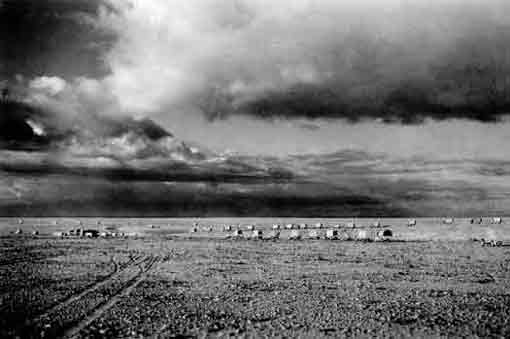 New Zealand Division Convoy Across The Desert From Nofilia